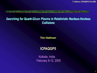 Searching for Quark-Gluon Plasma in Relativistic Nucleus-Nucleus Collisions