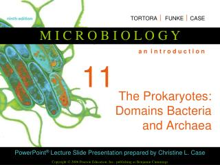 The Prokaryotes: Domains Bacteria and Archaea