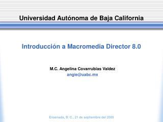 Introducción a Macromedia Director 8.0