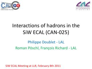 Interactions of hadrons in the  SiW  ECAL (CAN-025)