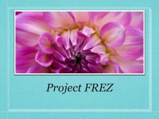 Project FREZ