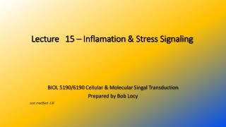 Lecture  15  – Inflamation  & Stress Signaling