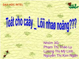 Nhóm 3G: Phạm Thị Thảo Ly  Lương Thị Mỹ Linh  Nguyễn Thị Kim Ngân