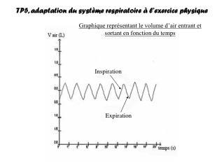 TP5, adaptation du syst�me respiratoire � l�exercice physique