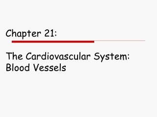 Chapter 21:  The Cardiovascular System:  Blood Vessels
