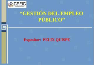 """""""GESTIÓN DEL EMPLEO PÚBLICO"""""""