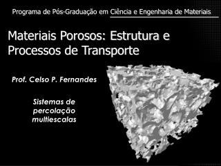 Materiais Porosos: Estrutura e Processos de Transporte