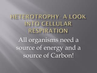 Heterotrophy- a look into Cellular Respiration