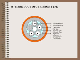 12 Fibre Ribbon