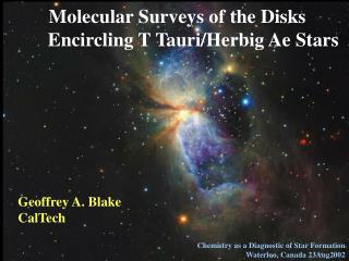 Molecular Surveys of the Disks Encircling T Tauri/Herbig Ae Stars