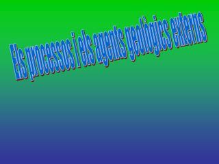 Els processos i els agents geològics externs
