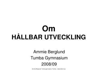 Om  HÅLLBAR UTVECKLING
