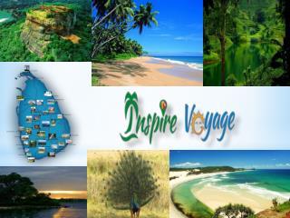 Sri Lanka Wild Life Tours