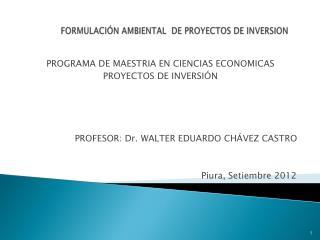 FORMULACIÓN AMBIENTAL  DE PROYECTOS DE INVERSION