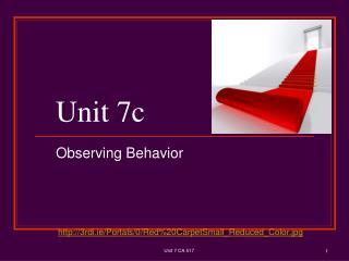 Unit 7c