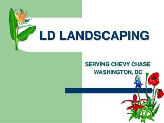 LD LANDSCAPING