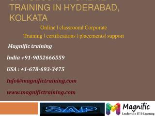 Sap Security Online Training in Hyderabad,Kolkata