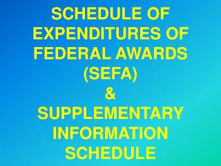 SCHEDULE OF EXPENDITURES OF FEDERAL AWARDS SEFA  SUPPLEMENTARY INFORMATION SCHEDULE