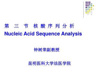 第  三  节  核 酸 序 列 分 析 Nucleic Acid Sequence Analysis 钟树荣副教授                     昆明医科大学法医学院