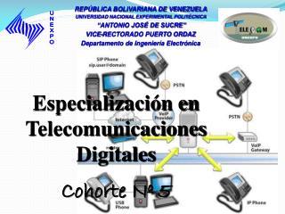 Especialización en Telecomunicaciones Digitales Cohorte Nº  5