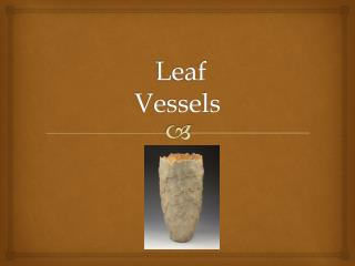Leaf  Vessels
