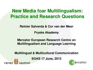 New Media foar Multilingualism: Practice and Research Questions