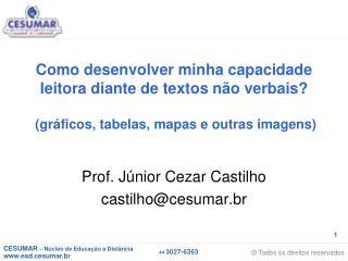 Prof. Júnior Cezar Castilho castilho@cesumar.br