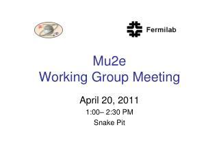 Mu2e  Working Group Meeting