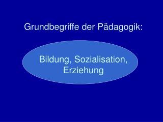 Grundbegriffe der Pädagogik: Bildung, Sozialisation, Erziehung