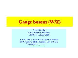 Gauge bosons (W/Z)