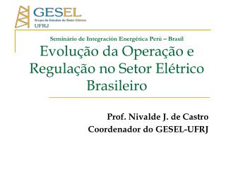 Prof. Nivalde J. de Castro Coordenador do GESEL-UFRJ