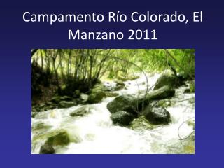 Campamento R�o Colorado, El Manzano 2011