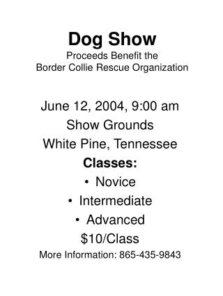 Dog Show Proceeds Benefit the  Border Collie Rescue Organization