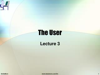 The User