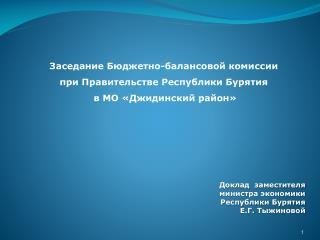Заседание Бюджетно-балансовой комиссии при Правительстве Республики Бурятия