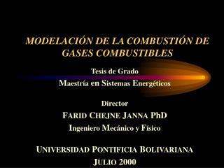 MODELACIÓN DE LA COMBUSTIÓN DE GASES COMBUSTIBLES