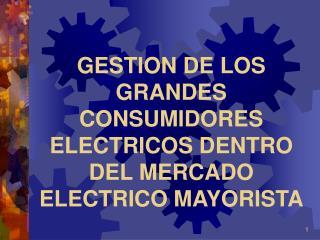 GESTION DE LOS GRANDES CONSUMIDORES ELECTRICOS DENTRO DEL MERCADO ELECTRICO MAYORISTA