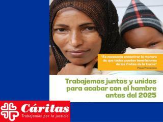 ¿Cuáles son las ayudas que Cáritas ofrece?