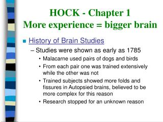 HOCK - Chapter 1 More experience  bigger brain