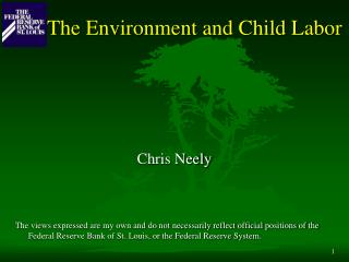 The Environment and Child Labor