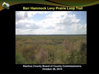 Barr Hammock Levy Prairie Loop Trail