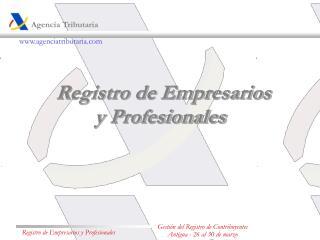 Registro de Empresarios y Profesionales