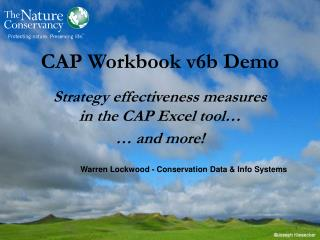 CAP Workbook v6b Demo Strategy effectiveness measures  in the CAP Excel tool… … and more!