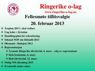 Fellesmøte tillitsvalgte 20. februar 2013 Årsplan 2013 ( skal vedtas) Ung leder v Kristine