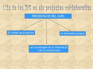 L'ús de les TIC en els projectes col·laboratius