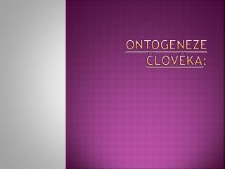 ontogeneze  člověka :