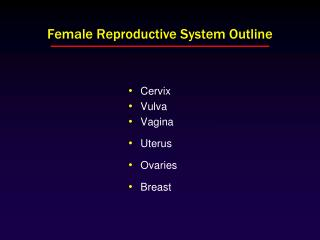 Female Reproductive System Outline