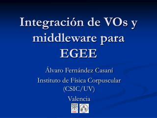 Integraci�n de VOs y middleware para EGEE