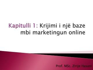 Kapitulli  1:  Krijimi i një baze mbi marketingun  online