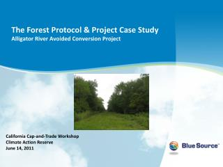 The Forest Protocol & Project Case Study Alligator River Avoided Conversion Project